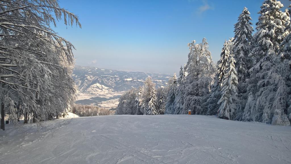 Zimovanje na Pohorju skupine Rdeča kljuka